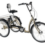 Electric Bikes for Disabled Adults