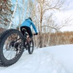 6 Best Fat Tire Electric Bike