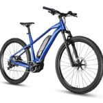 What Are Dual Motor Electric Bikes