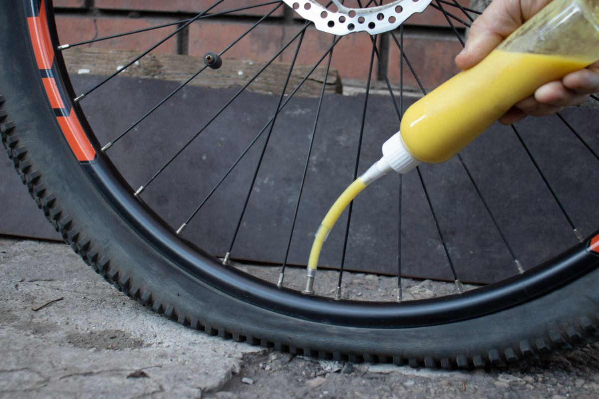 Puncture Resistant Mountain Bike Tires