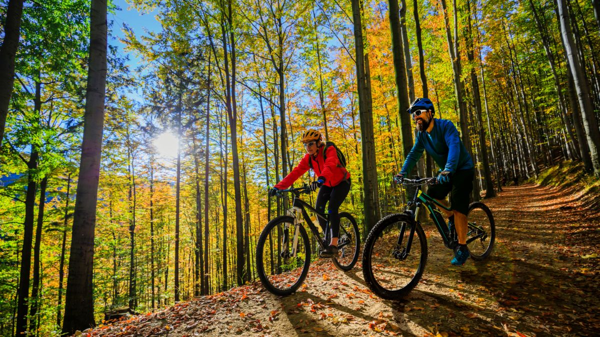Selecting the Right Bike for the Bike Tour